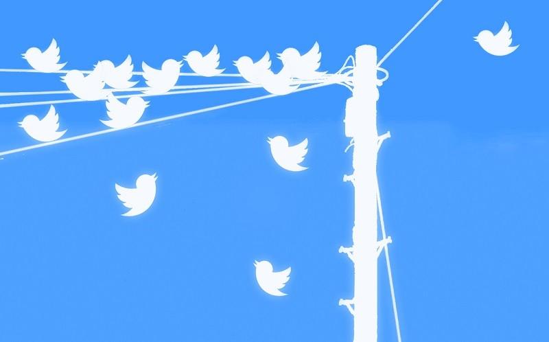 INEGI mide la felicidad de los mexicanos en Twitter - twitter-logos-800x498