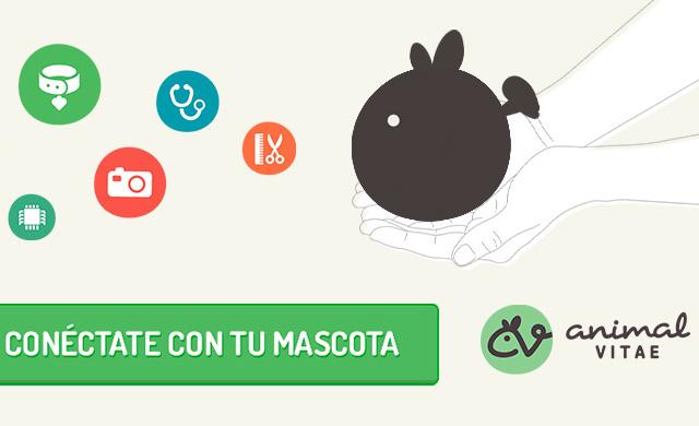The App Date Pets este fin de semana, lleva a tu mascota - animal-vitae
