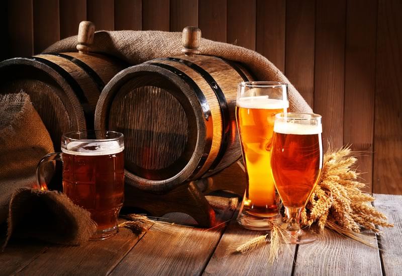 Mexicana convierte residuos de la cerveza en pigmentos nutritivos - residuos-de-la-cerveza-en-pigmentos-nutritivos
