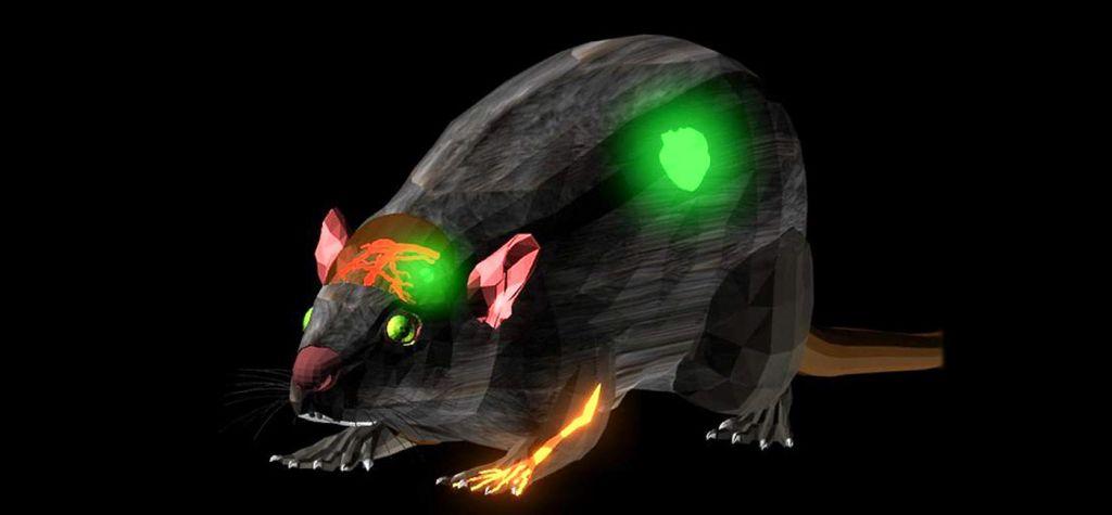 Desarrollan colorante infrarrojo para la detección de tumores - fluorescent-dye-stanford