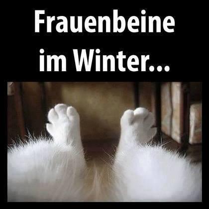 Bildergebnis für winter beine rasieren