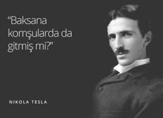 ototesla.com