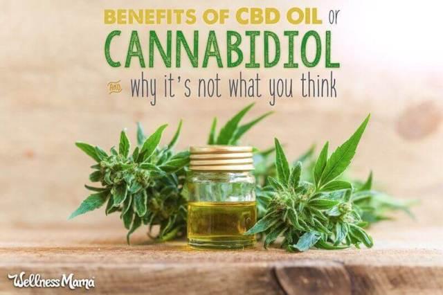 Benefits of Cannabidol or CBD oil