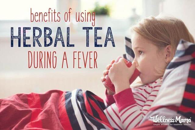 Benefits of Using Herbal Teas During a Fever