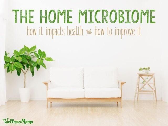 The home microbiome.  How it impacts health and how to improve it.