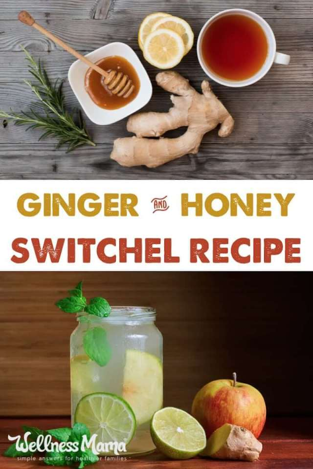 Switchel is an easy-to-make and highly nutritious fermented drink made with apple cider vinegar, honey or molasses and ginger.