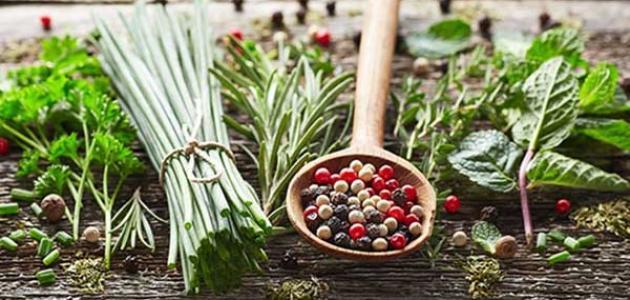علاج الدم في البول بالأعشاب موسوعة وزي وزي