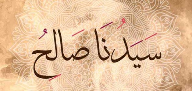 قصة النبي صالح عليه السلام موسوعة وزي وزي