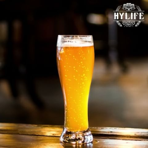 HyLife Brewing Company