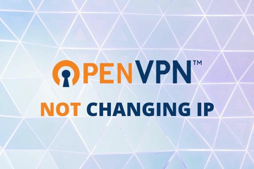 OpenVPN not changing IP