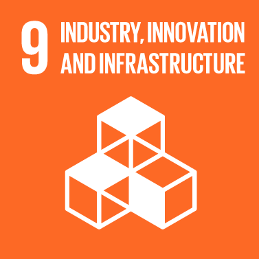 Industry, Innovation & Infrastructure Icon