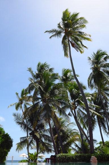 park_hyatt_maldives_hadahaa_worldtravlr_net-88