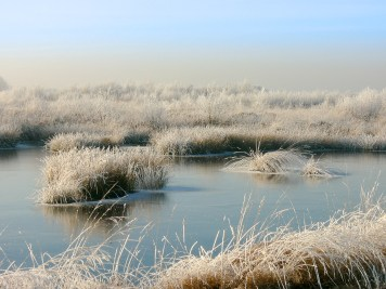 ostfriesland-im-winter-worldtravlr-net-1160217