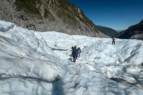 Flying Fox: Heli Hike, Fox Glacier, South Westland World Heritage Area, New Zealand