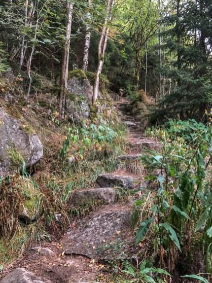 Wanderung Brocken - Steinerne Renne