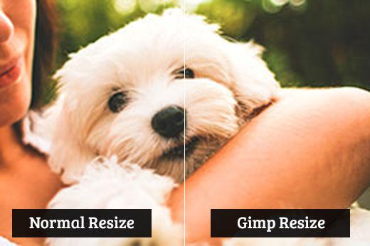 So sánh thay đổi kích thước Gimp với thay đổi kích thước bình thường