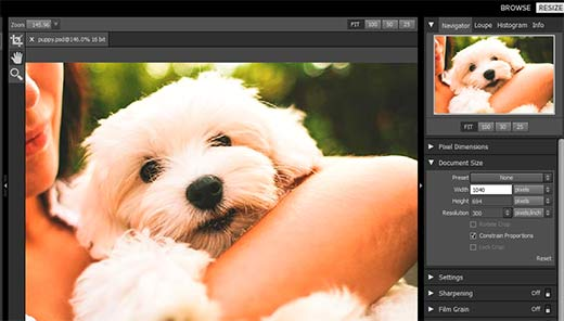 Resizing an image to enlarge it in Perfect Resize