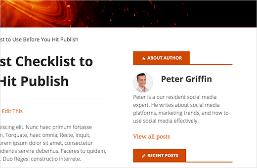 Author info widget in WordPress