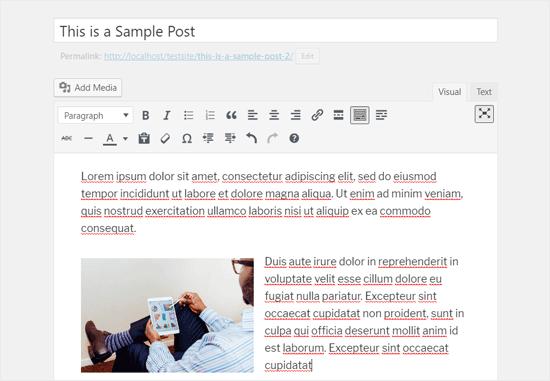 Editor de WordPress clásico en pantalla completa en modo visual