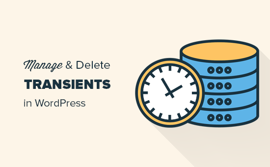 How to easily manage transients in WordPress