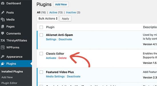 Delete inactive plugins