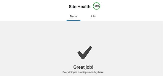 Получение отличного результата в здоровье сайта WordPress
