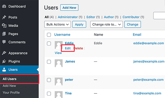 Editing a user details in WordPress