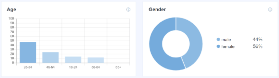 Age and Gender of Website Visitors in WordPress