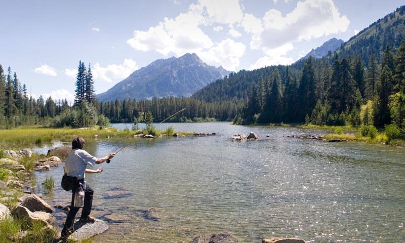 Fly Fishing Snake River
