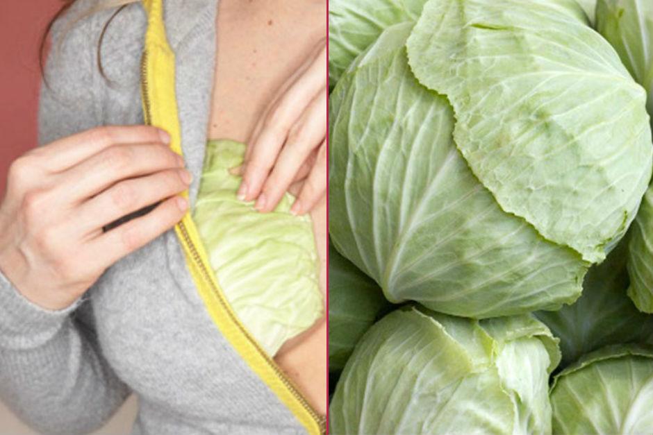 lahana-yapraklarinin-faydalari