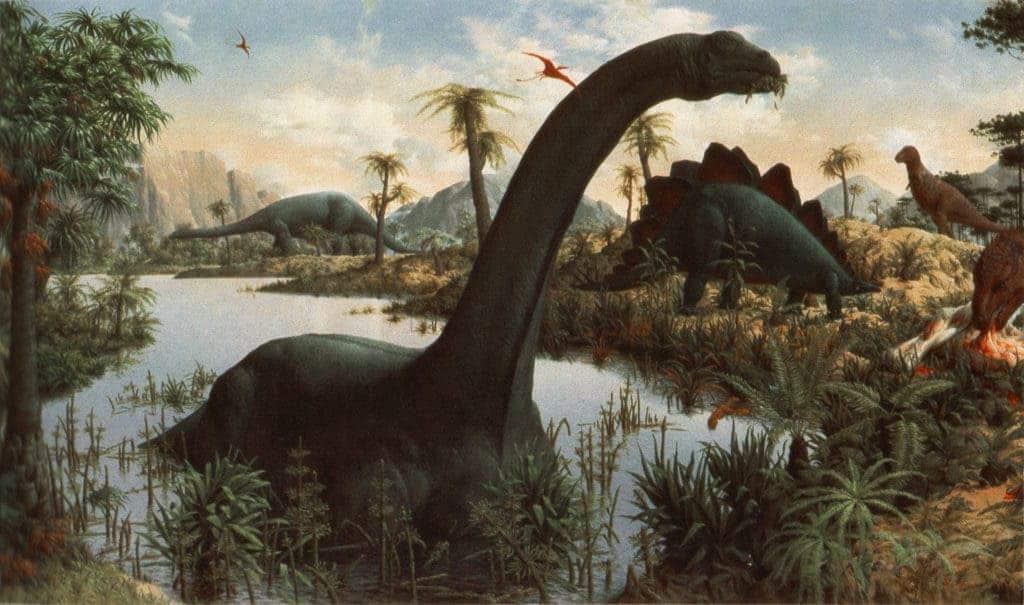 Dinosaurs Over The Years Whendinosaursruledthemind Descubre todas nuestras páginas para colorear sobre el tema de dinosaurios. dinosaurs over the years