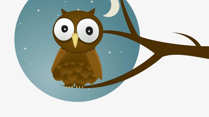 Download 86  Gambar Burung Hantu Latar Belakang   Gratis