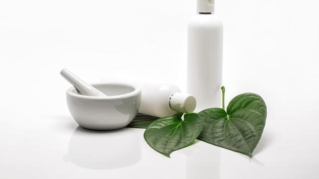 Daun Sirih untuk Mengatasi Bau Mulut, Ampuhkah? (PhuShutter/Shutterstock)