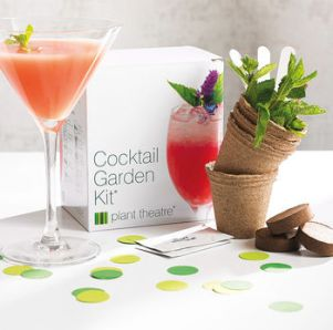 Grow Your Own Cocktail Garden, best christmas presents for travellers