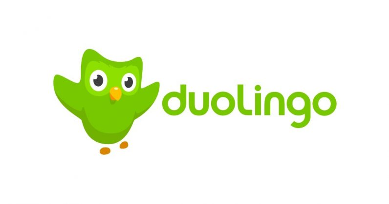 Image result for duolingo