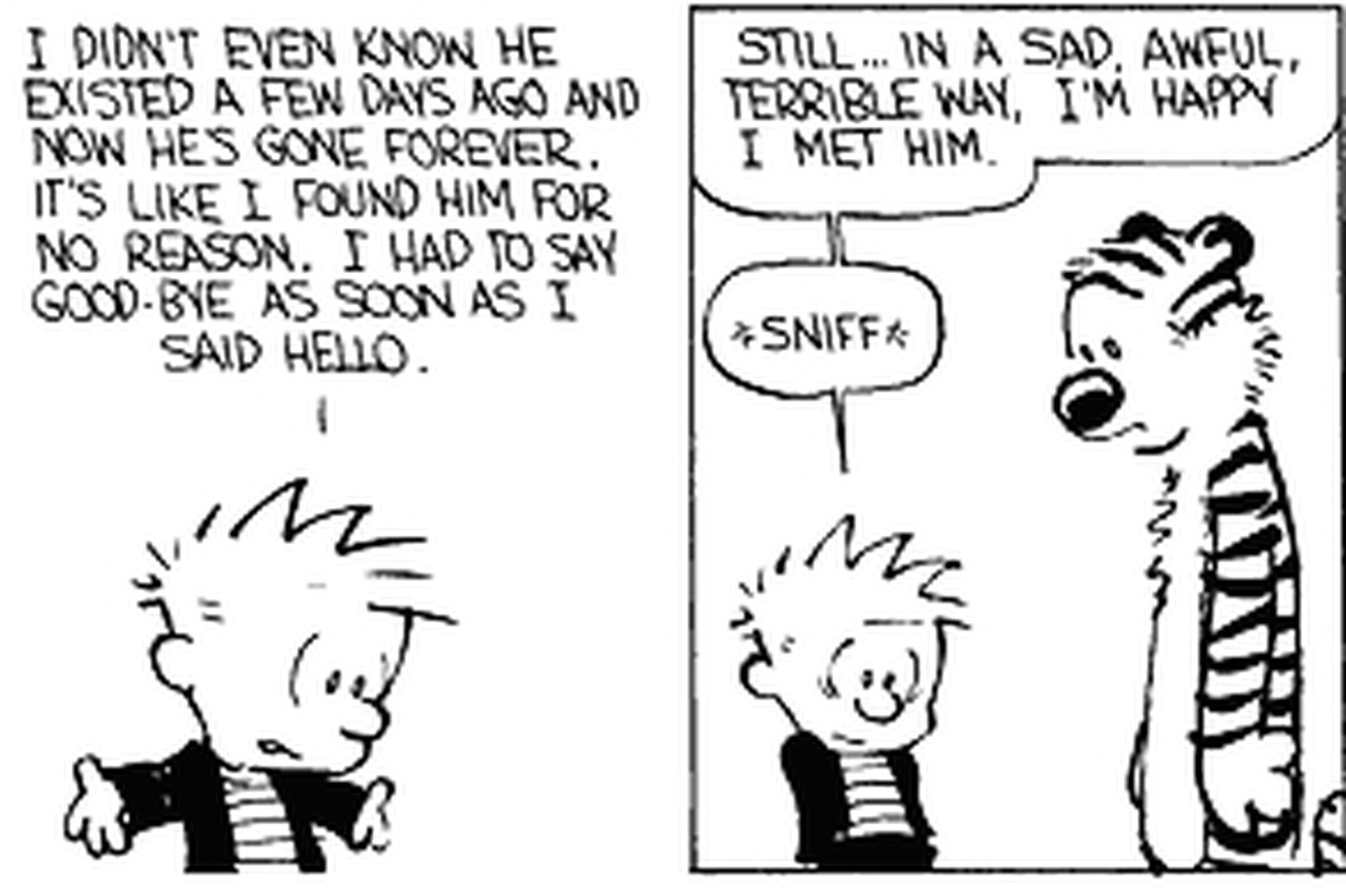 25 Great Calvin And Hobbes Strips
