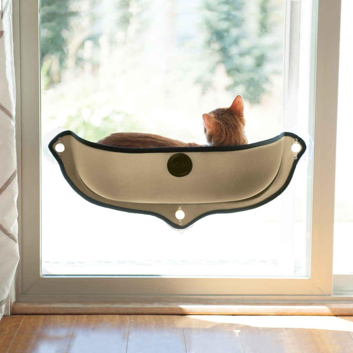 Sleeping Purrty Best Cat Beds You Can Buy Online