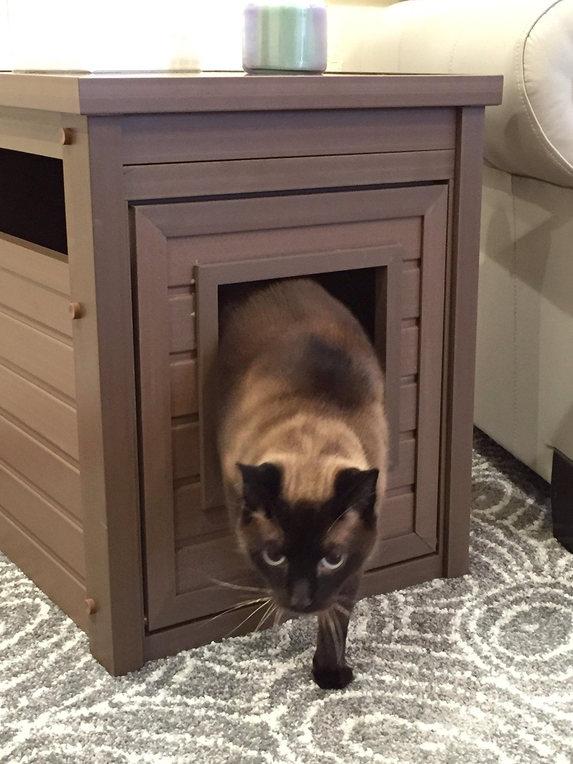 Hide The Litter Box With A Stylish End Table While Saving Big