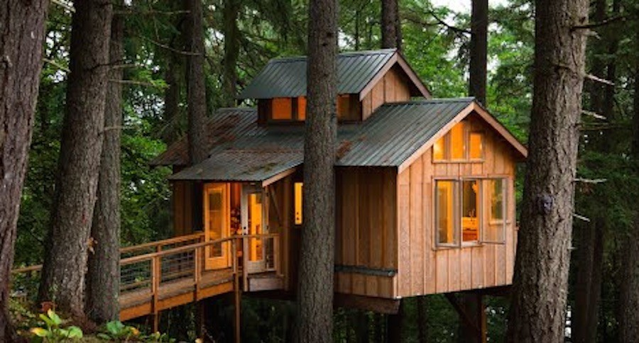 Want To Live In A Fully Functional Treehouse VIDEO