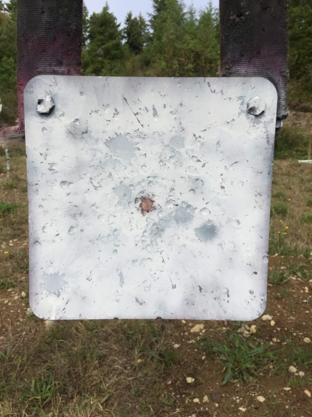 Here's How Ruger's New Hawkeye FTW Hunter Did At The Range 500 yards