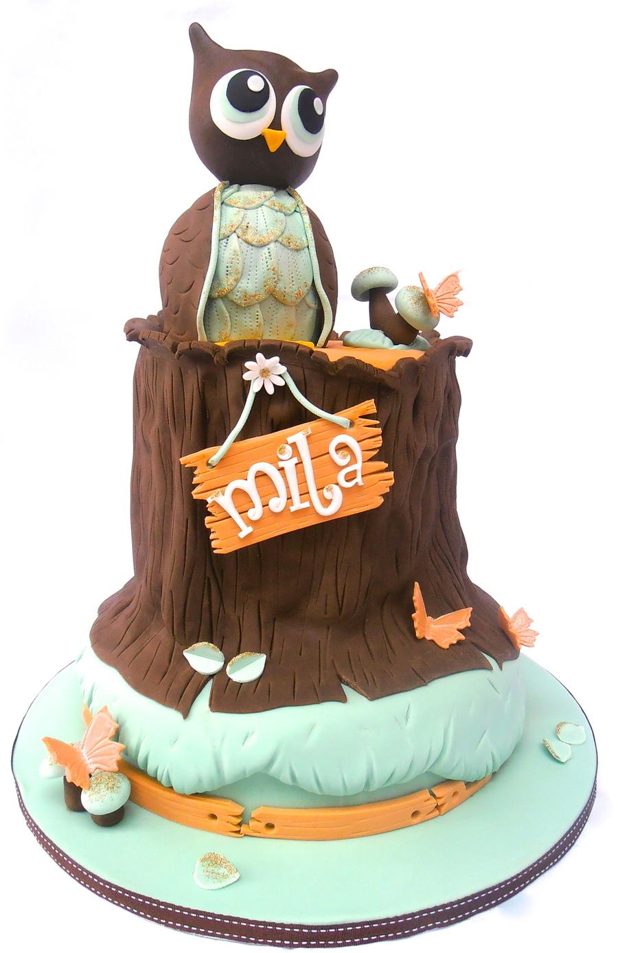 Owl And Tree Stump Birthday Cake Cakecentral Com