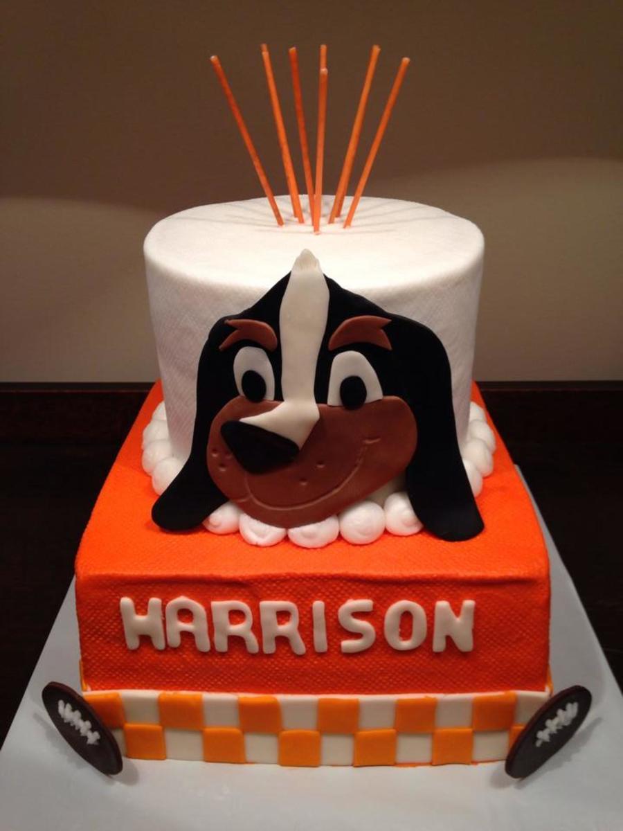 Boy 1st Birthday Football Cake