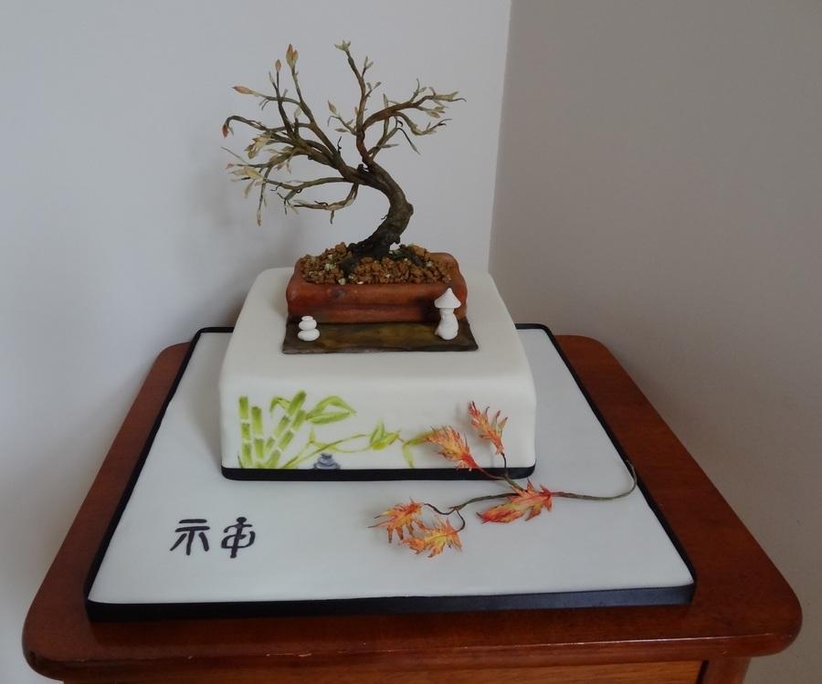 Zen Autumn Bonsai Tree Cakecentral Com