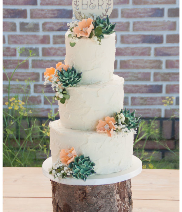 Top Succulent Wedding Cakes   CakeCentral com Rustic Weddingcake With Succulents