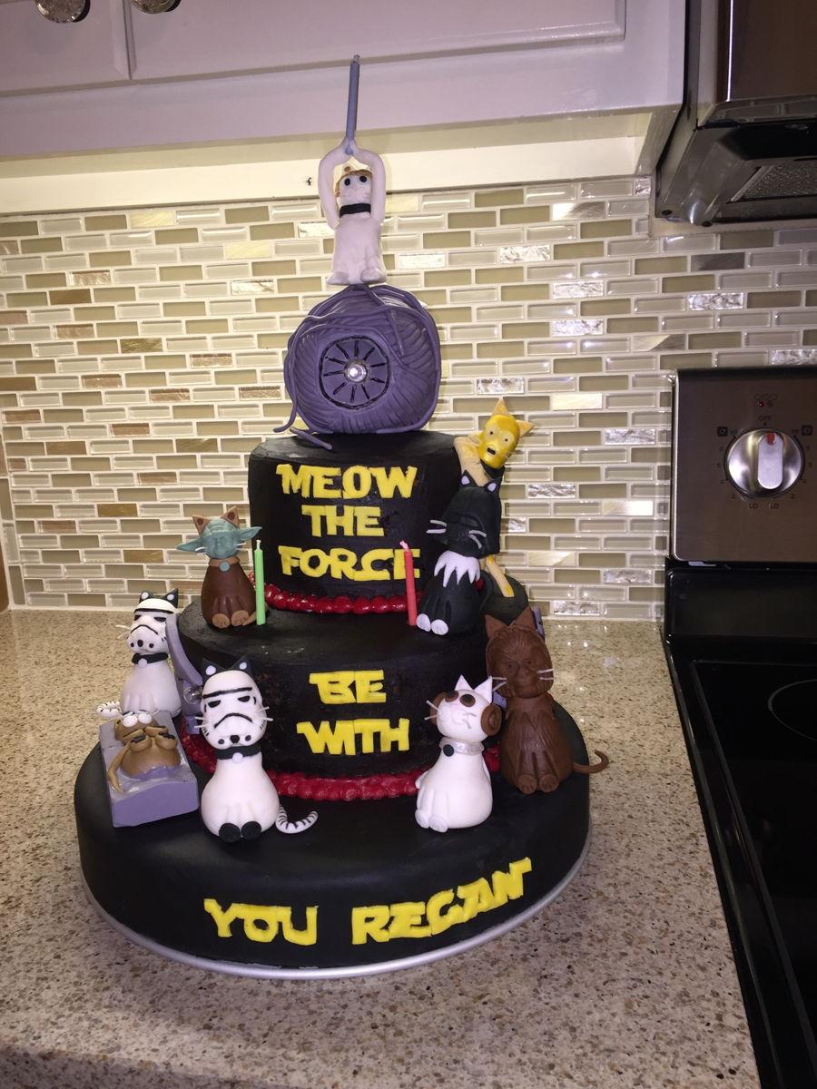 Star Wars Cat Birthday Cake Cakecentral Com