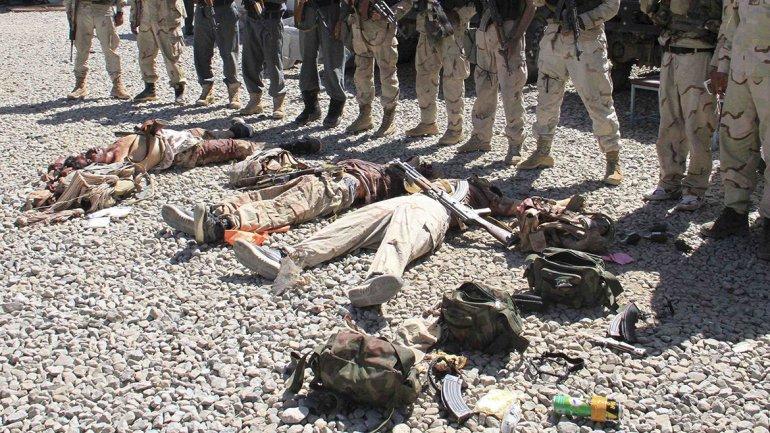 Soldados afganos exhiben los cuerpos de terroristas talibanes abatidos el pasado 4 de septiembre en Ghazni
