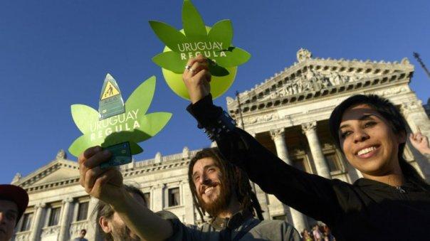 Uruguayquiere avanzar enla investigaciónyuso medicinal del cannabis