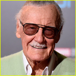 Stan Lee Did Not See 'Avengers: Endgame' Before His Death