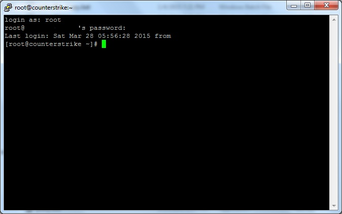 PuTTY SSH Client Console Window