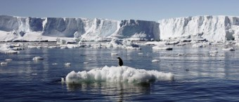 NYT Claims Antarctica May Be Undergoing 'Unstoppable Disintegration'